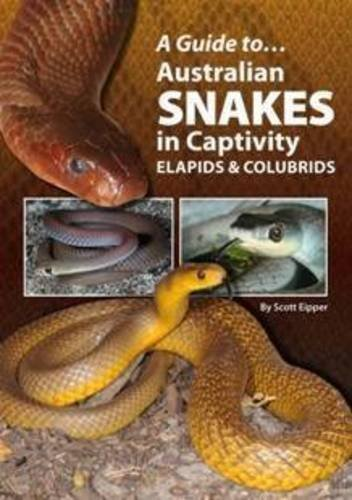 A Guide to Australian Snakes in Captivity: Elapids and Colubrids PDF