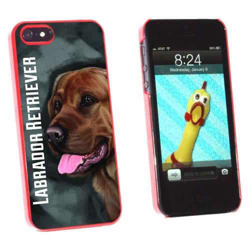 Chocolate Labrador Retriever Gray Grey - Dog Pet - Snap On Hard Protective Case for Apple iPhone 5 5S - Red