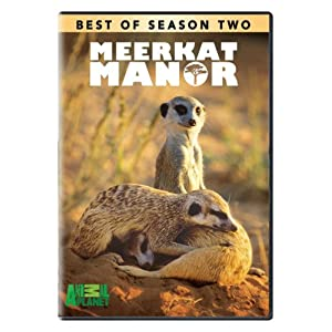 Best of Meerkat Manor - Season 2 movie
