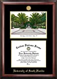 University of South Florida Gold embossed diploma frame with Campus Images lithograph
