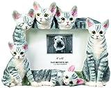 E & S Pets 35297-7b Large Cat Frame
