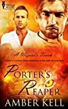 Porters Reaper (A Wizards Touch Book 5)