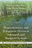 img - for Biogeochemistry and Pedogenetic Process in Saltmarsh and Mangrove Systems (Environmental Science, Engineering and Technology) book / textbook / text book