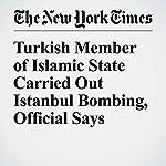 Turkish Member of Islamic State Carried Out Istanbul Bombing, Official Says | Tim Arango,Ceylan Yeginsu