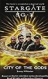 Stargate SG-1: City of the Gods: SG1-4