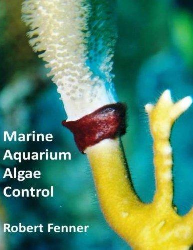 marine-aquarium-algae-control