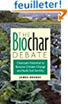 The Biochar Debate: Charcoal's Potent...
