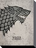 Game Of Thrones - Haus Stark, Der Winter Naht Poster Leinwandbild Auf Keilrahmen (80 x 60cm)