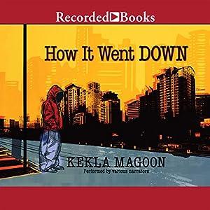 How It Went Down Audiobook