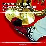 Fanfara Tirana Albanian Wedding: Brass Explosion