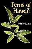 Ferns of Hawai'i