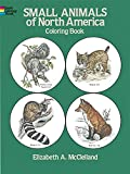 img - for Small Animals of North America Coloring Book book / textbook / text book