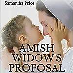Amish Widow's Proposal   Samantha Price