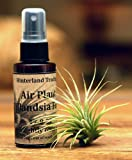 Lawn & Patio - Hinterland Trading Air Plant Tillandsia Food 2floz Spray Bottle Air Plants Fertilizer 17-8-22