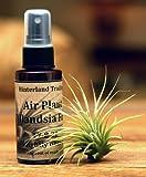 Hinterland Trading Air Plant Tillandsia Food 2floz Spray Bottle Air Plants Fertilizer 17-8-22