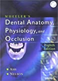 Wheelers Dental Anatomy, Physiology and Occlusion, 8e 8th edition by Ash, Major M.; Nelson, Stanley published by Saunders Hardcover