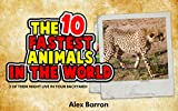 The Top 10 Fastest Animals in the World: 3 of Them Might Live in Your Backyard