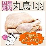 チキンナカタ 鳥肉 鶏 丸鶏 ( 丸鳥 ) 中抜き 1羽 肉 【 国産鶏肉 】新鮮 鳥 和歌山県産 産地直送 約2.2kg~約2.8kg 【 冷蔵 】 ランキングお取り寄せ