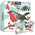 Charity Christmas card box - Bright Robin and Happy Hare- 20 charity cards sold in support of Macmillan Cancer Support