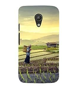 printtech Tea Leaves Plantation Back Case Cover for Motorola Moto G2 X1068 / Motorola Moto G (2nd Gen)