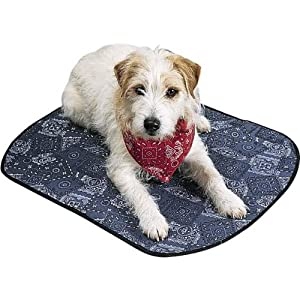 PetEdge Miracool Dog Mat, Medium, 24-Inch, Cowboy Blue by Animus, Inc.