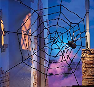 Amazon.com : Giant Halloween Spider Web Decoration By Collections Etc ...