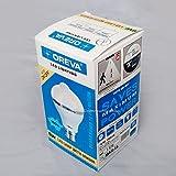 Oreva Branded LED BULB Lamp sensor 6W cool white B22D Auto on-off sensor
