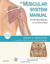 The Muscular System Manual- The Skeletal Muscles of the Human Body