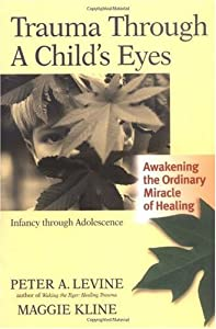 "Cover of ""Trauma Through a Child's Eyes: ..."