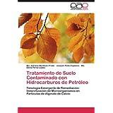 Tratamiento de Suelo Contaminado con Hidrocarburos de Petróleo: Tenología Emergente de Remediación: Inmovilización...