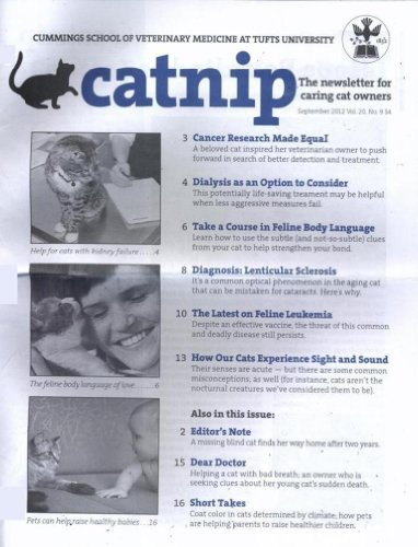 Catnip (1-year auto-renewal)