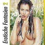 Erotische Fantasien 2 | Seymour C. Tempest,Lisa Cohen,Dave Vandenberg