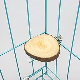 Govine Round Squirrel Parrot Bird Cage Perch Stand Platform Pet Bird Toy