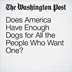 Does America Have Enough Dogs for All the People Who Want One? | Kim Kavin