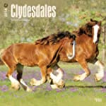 Clydesdales 2016 Square 12x12 Wall Ca...