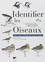 Identifier les oiseaux : Eviter les pièges d'identification les plus complexes