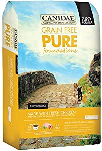 CANIDAE Grain Free PURE Foundations Puppy with Fresh Chicken, 24-Pound