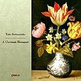 Sonata In D Major: Allegro - Trio Settecento