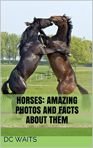 Free Kindle Book : Horses: Amazing Photos and Facts about Them