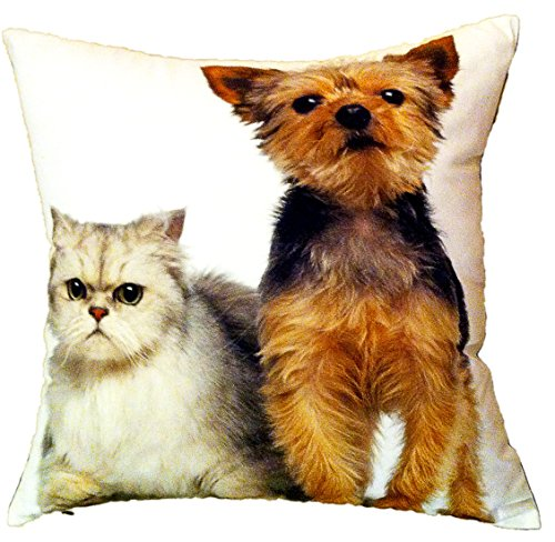 """Artiwa Cat & Dog Cotton & Soft Velvet Sofa Couch Throw Decorative Pillow Cover 18""""X18"""" (Pc56A01) front-592826"""