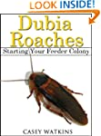 Dubia Roaches: Starting a Feeder Colo...