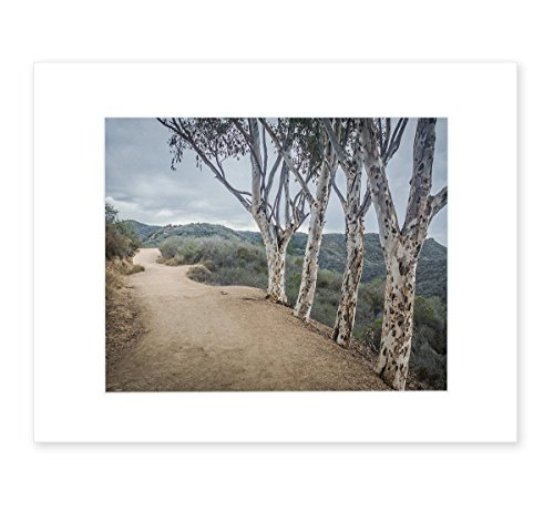 8x10-matted-photographic-print-southern-california-landscape-wall-art-a-storm-at-will-rogers