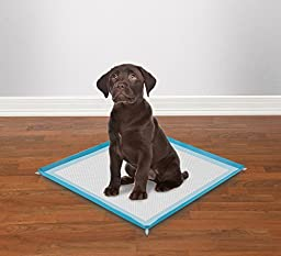 Clean Go Pet Silicone Puppy Pad Holders - Convenient, Easy-to-Clean Holders for Puppy Pads, 19¼\