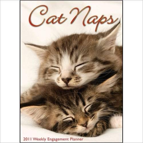 Cat Naps 2011 Engagement Calendar