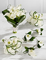 White Wedding Calla Lily Collection 2