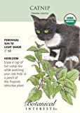 Catnip Certified Organic Seeds 450 Seeds