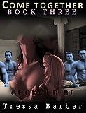 Come Together Book 3: Cuckold Bi MMF MFM MM F
