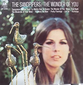 The Sandpipers The Wonder Of You Amazon Com Music