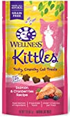 Wellness Kittles Grain Free Salmon   Cranberries Crunchy