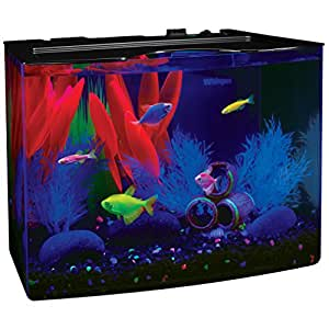 Amazon.com : Tetra 29005 GloFish Aquarium Kit, 3 Gallon ...